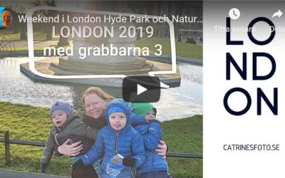 Video från Hyde Park och Natural History Museum, London